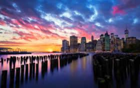 new, york, asus