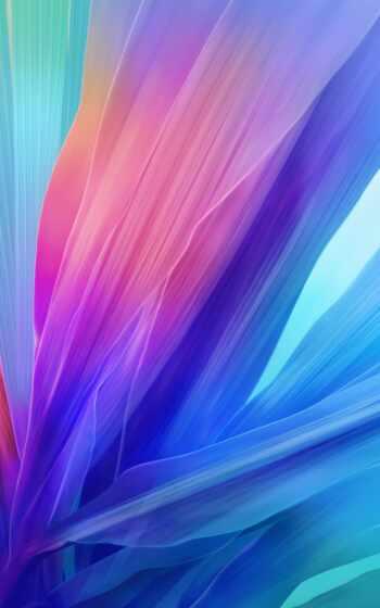 цветы, лейкопластырь, intel, abstract, core, gb, тигр, balm, iphonewallpaper, androidwallpaper, hdwallpaper