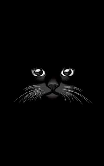 vectors, free, кот, вектор, black, illustration, kitty, brainly, graphic, графика,