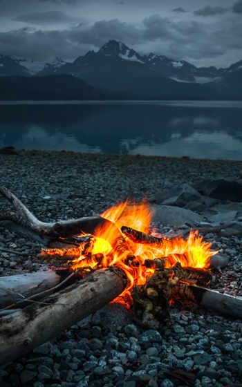 bonfire, феликс, jaehn,