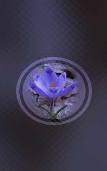 blue, cobalt,