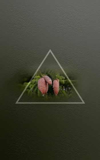 треугольник, you, группа, трайэнгл, grup,