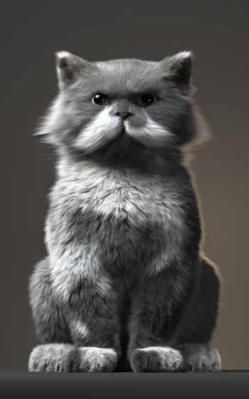 whiskers, волосы,