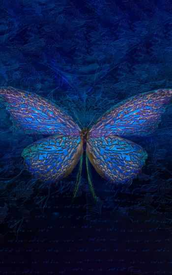 ,, бабочка, синий, насекомое, moths and butterflies, лазурный, invertebrate, симметрия,