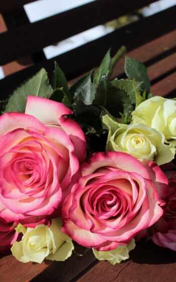 москва, магазин, garden, продавец, burst, цвета, букет, ugrozhat, ножом, роза, этом