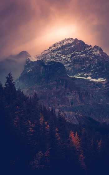 небо, горы, лес,