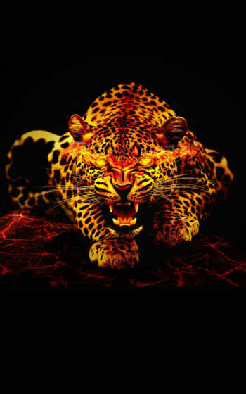 jaguar,
