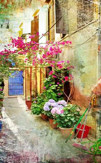 ,,цветок,розовый,флора,завод,флористика,цветковое растение,аллея,flower arranging,окно,весна,Греция,живопись,royalty-free,стоковая фотография,масляная живопись,