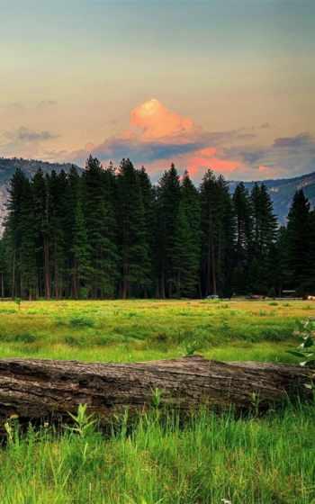 landscape, natural,