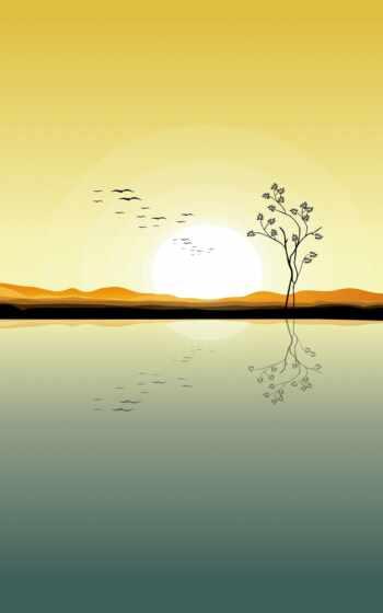 дерево, растение
