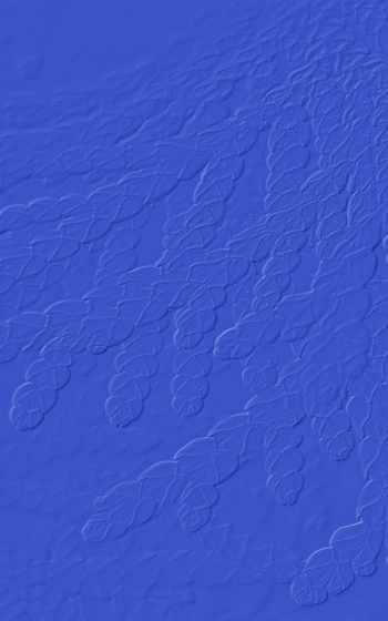 majorelle, blue,