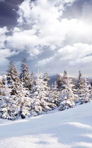 снег, selfie, наклейка, motion,