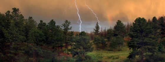 небо, lightning, лесу, буря, лес, ночь, природа, сосновом, air, ipad,