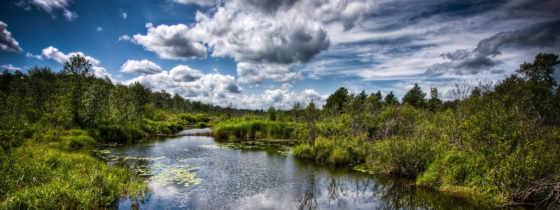 ,небо,река,лес,