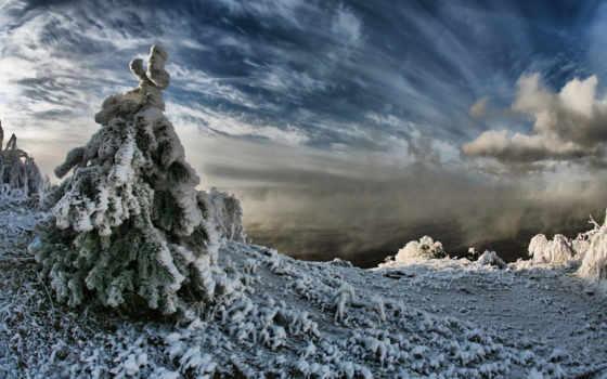 winter, чудесный