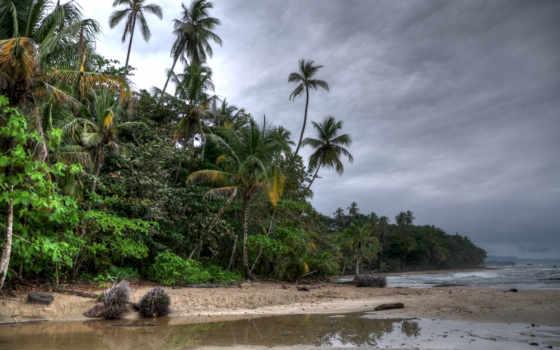 пляж, природа, тучи, water, поляна, desktop, теме,