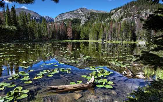 природа, full, природы, reservoir,