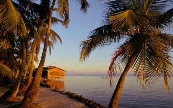 остров, summer, закат, honduras
