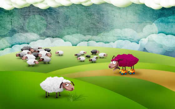 sheep, роликах, овцы, фоны, поле, овечки, one, розовая,