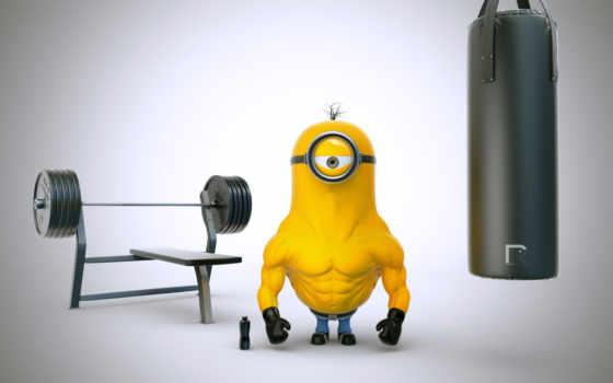 bodybuilding, приколы, скидка, красивые, широкоформатные,