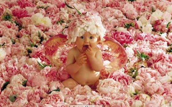цветы, малыш, жизни