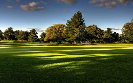 summer, природа, трава