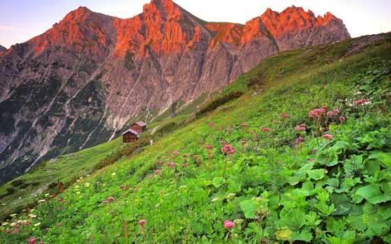 австрия, трава, гора, brandnertal, склон, preview,