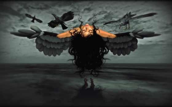 вороны, девушка, ворона, крылья, нее,