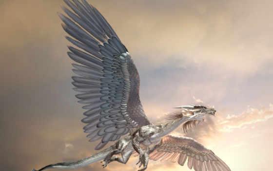 дракон, spydraxis, облако, взгляд, версия, nerdcore,