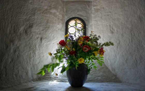 цветы, широкоформатные, весна, самые, качественные, обоях, яркие, красивые, живые,