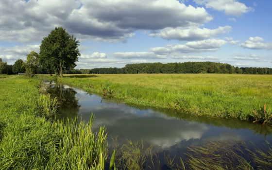 река, elena, among, рыбалка, реке, небольшая, зелени, сарья, жердочка,