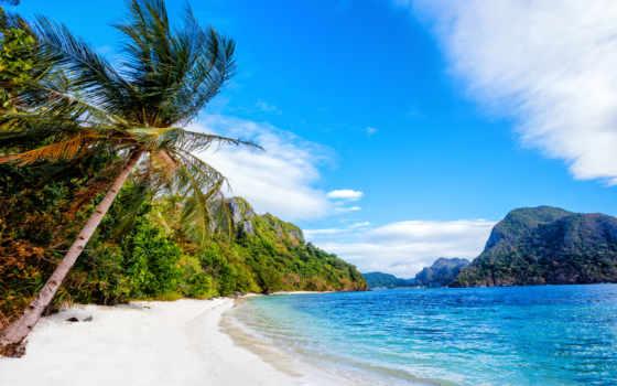 philippines, desktop, images, пальмы, море,