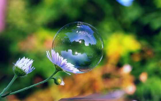 life, чудеса, жизни, свою, our, choose,