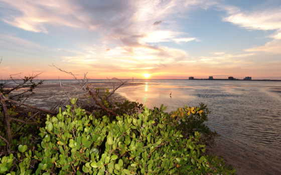 florida, сша, природа, landscape, побережье, небо, закат, рассвет, usa,