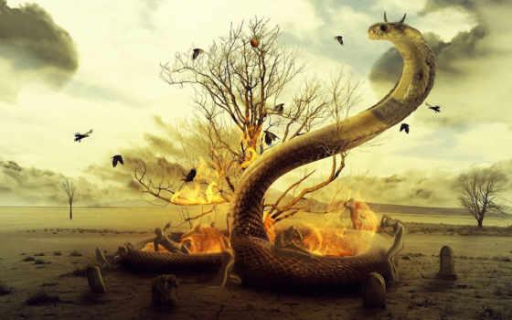 они, timothy, will, senses, come, их, escape, то,