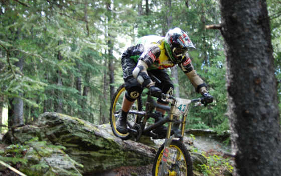 велосипед, downhill, extreme, велоспорт, даунхилл, лес, высоком,