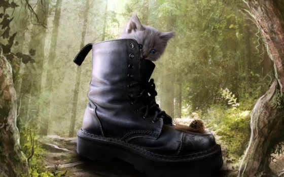 ботинок, puss,