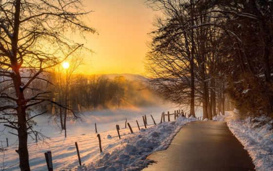 virágmező, winter, jeg