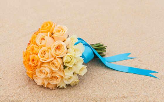 розы, stock, цветы