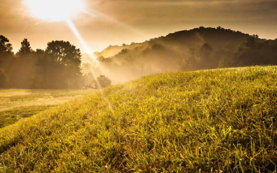 трава, закат, деревя, hill, солнечно, природа, mist, восход,