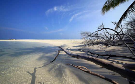 пляж, ipad, maldives