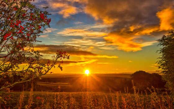 осень, tapety, закат, pulpit, шиповник, sun, лес, пруд,