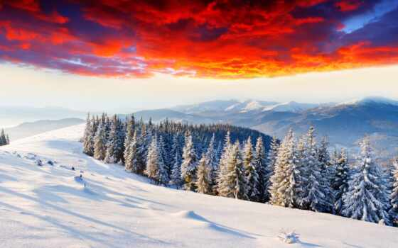 winter, заснеженный, лес, елка, гора, снег, trees, небо, природа