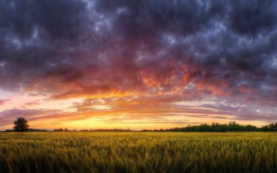 nature, computer, hungarian, skies, clouds, hungary, grass, desktop, sunset, fields, mail, seasons, wp, trees, lxxiii,