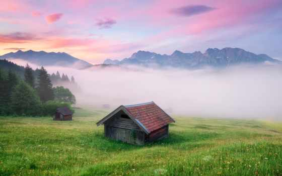 germany, meadow