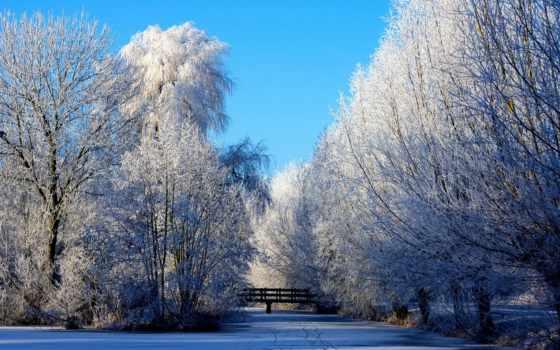 winter, season, природа, bridges, снег, trees, landscapes,