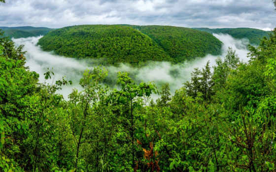 pennsylvania, природа, сша, каньон, grand, лес, горы, гранд,