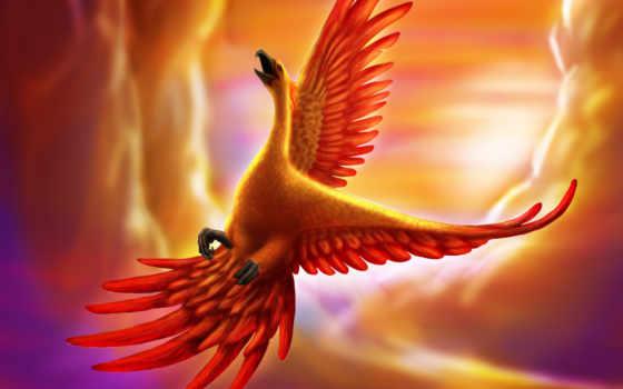 phoenix, птица, art, существо, goldenphoenix,