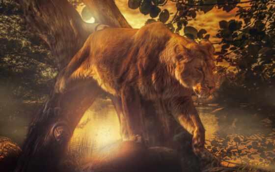 львица, лев, дерево, загрузить, razreshenie, fon, узкий, хорошії, raznyi, kot, more