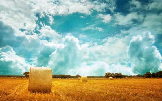 summer, природа, поле, небо, landscape, горизонт, пшеница, сено, margin, стог, oblaka,